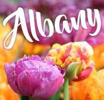 Albany New York Tourism